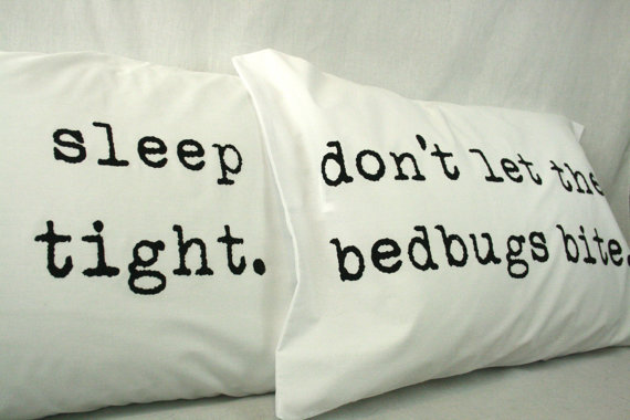 Bed Bugs And How To Spot Them And Kill Them